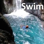 5 Swim wilson + i site